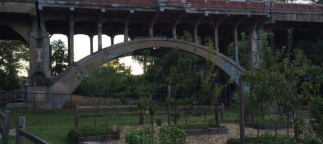 BridgePiedmontPark