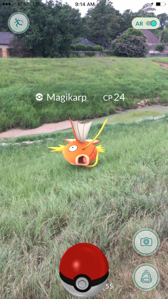 PokemonGoAR