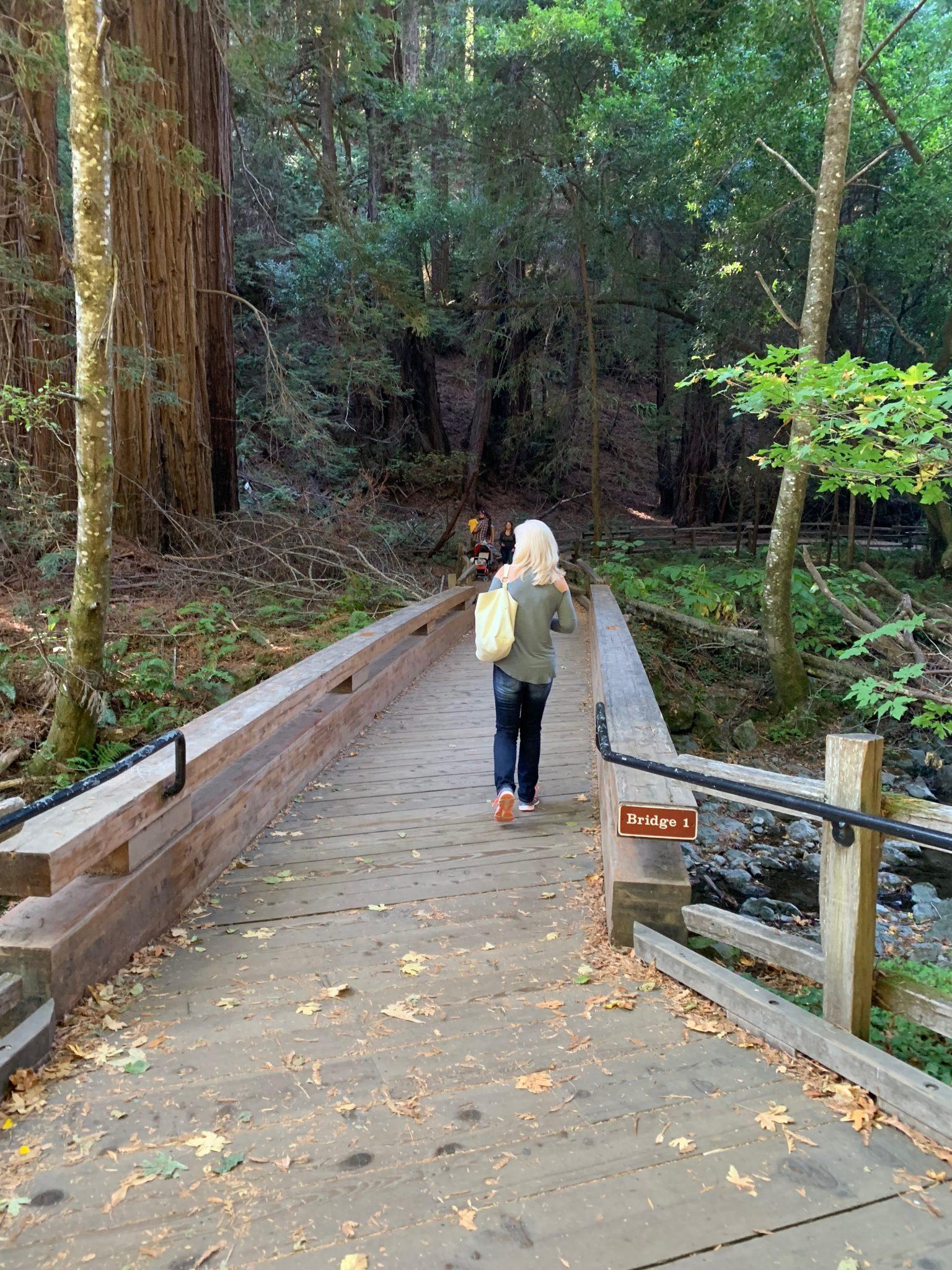 Bridge 1 Muir Woods