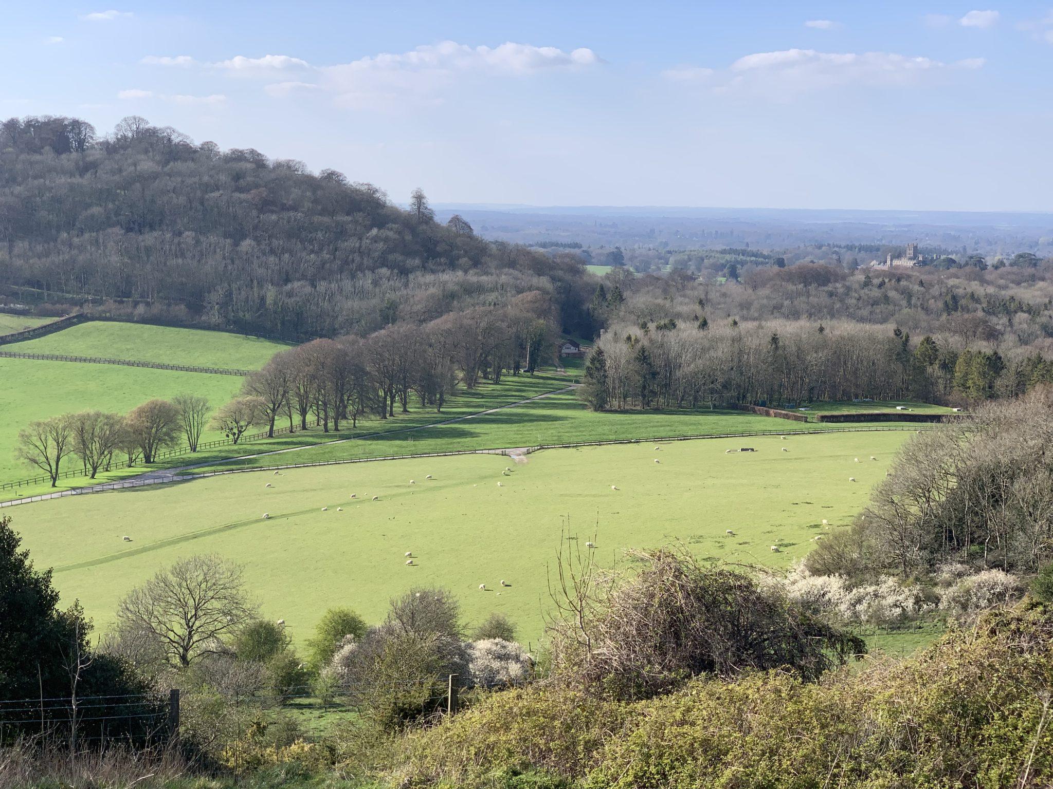 Beacon Hill towards Highclere Castle