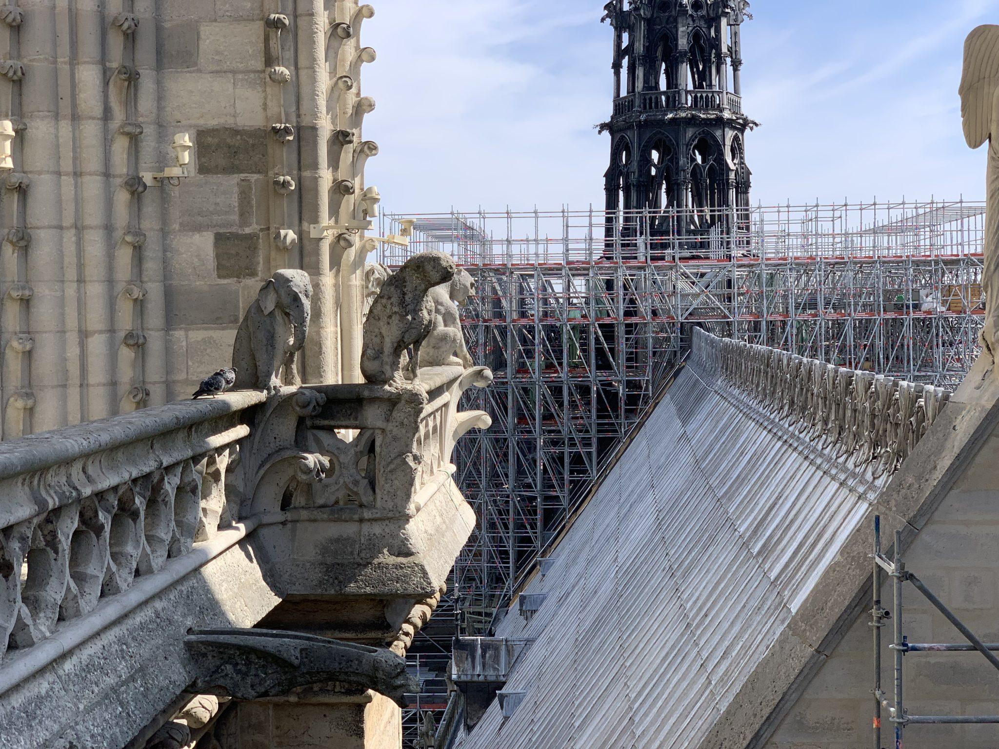 Notre-Dame elephant gargoyle